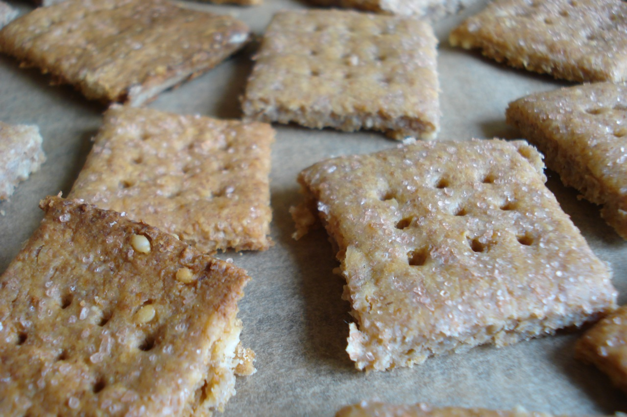 Wholegrain Sourdough Crackers