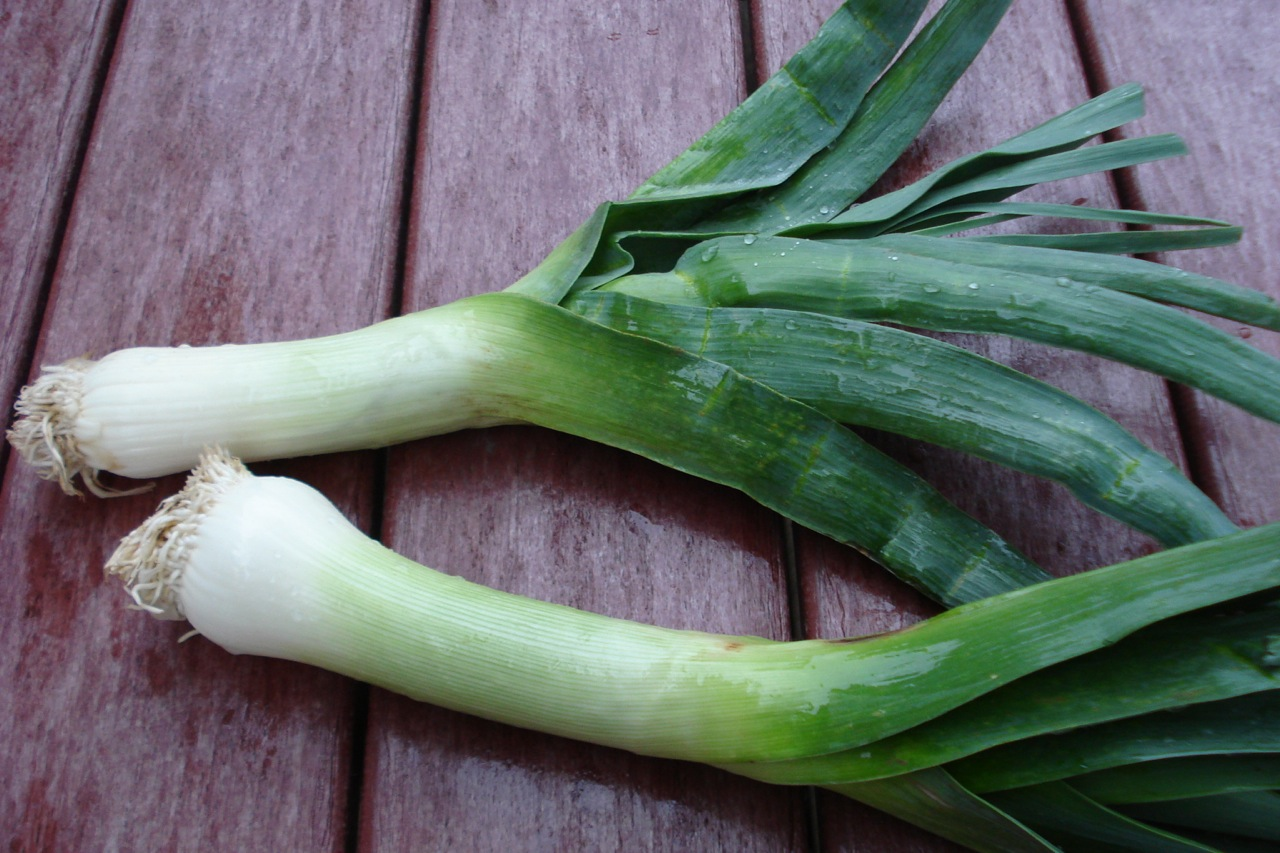 How to Prep a Leek